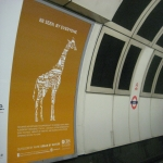 Tube Advertising in Hampshire 4